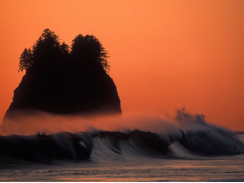 Coastal Adaptation Resources for a Changing Climate & Washington Coast