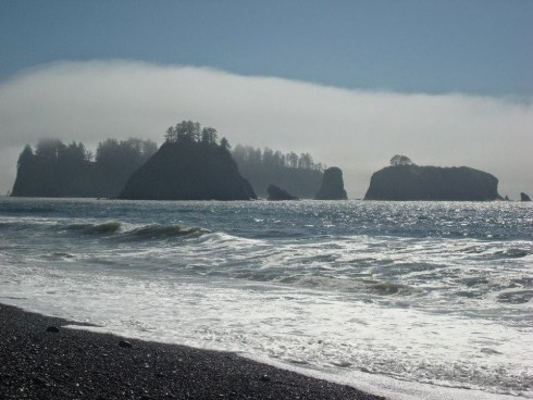 The Washington Coast is a special place with a variety of habitats and human uses.