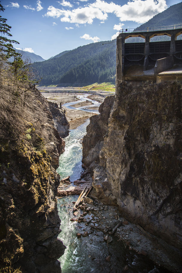Updates on the Elwha Dam Removal & Restoration