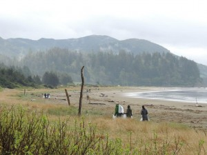 Hobuck Coastal Cleanup