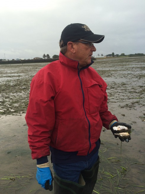 Dave Nisbet, Owner of Goose Point Oysters with an oyster in hand.