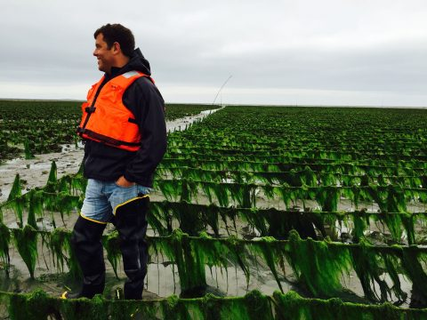 Walking in Someone else's Waders: A Spotlight on our Partners in the Shellfish Industry