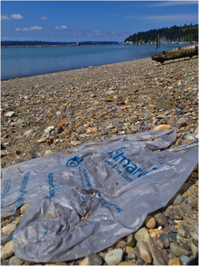 Tacoma Bring Your Own Bag Ordinance Effective July 12th