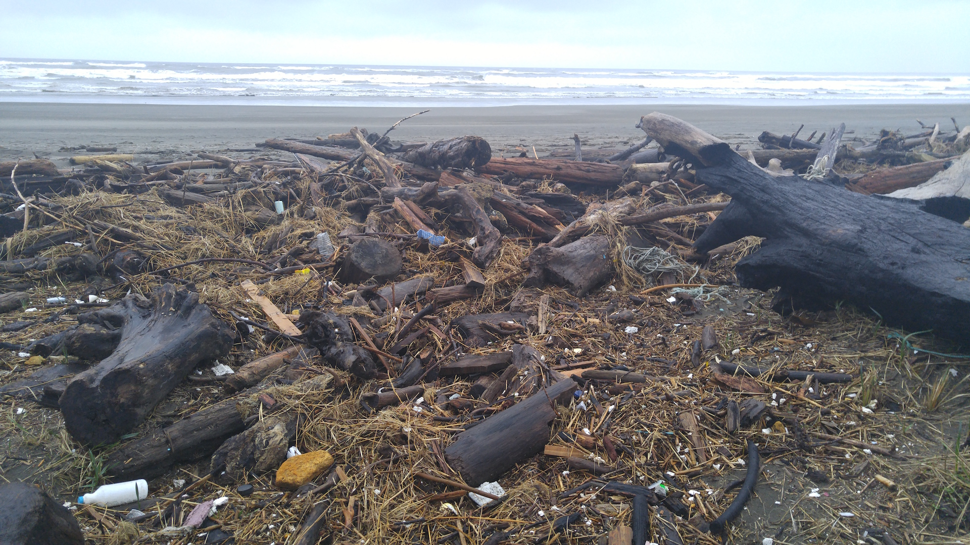 Plastics Dominate Debris on State's Coastal Beaches