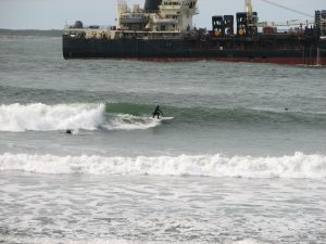 A surfer riding a wave in Westport