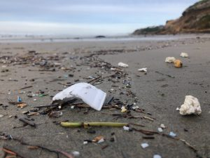 Bill to Tackle Plastics Crisis Passes Washington State House